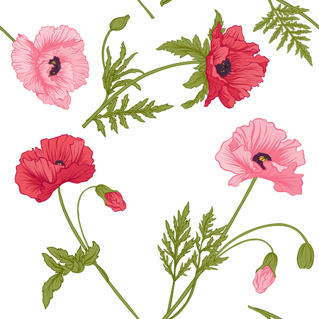 Seamless pattern with pink and red poppy flowers