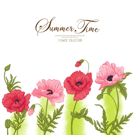 Summer time card with red and pink poppy on green watercolor bac