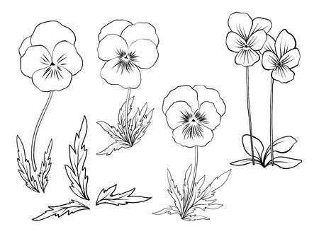 Violet flowers. Set of outline flowers. Illustration