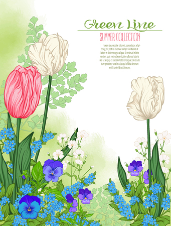 Composition with spring flowers: tulips, daffodils, violets, forget-me-nots in botanical style. Good for greeting card for birthday, invitation or banner