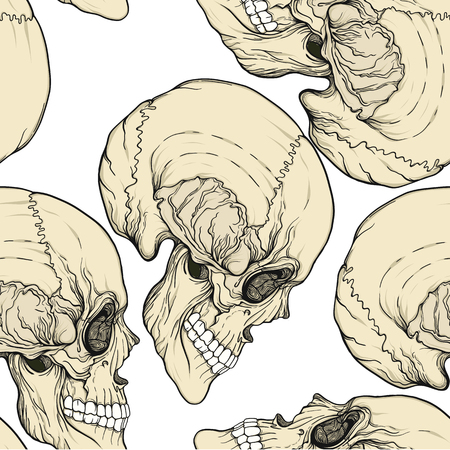 Seamless pattern, background with human skull. Stock line vector