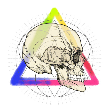 Human skull on the watercolor color triangle  background with sa Illustration
