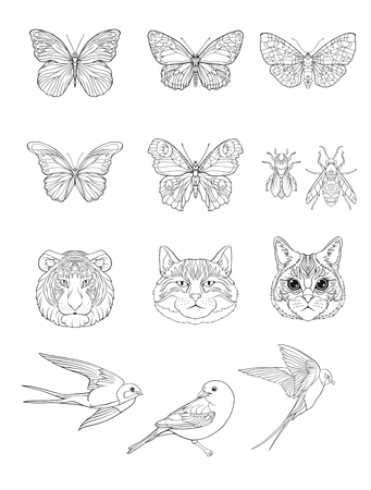 Set of outline cats, tiger, birds, butterflies and bees.