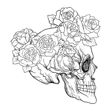 Cráneo Del Azúcar Con El Modelo Decorativo Y Una Guirnalda De Rosas ...