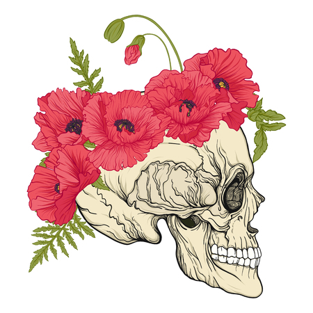 Human skull with a wreath of red poppies on the head.