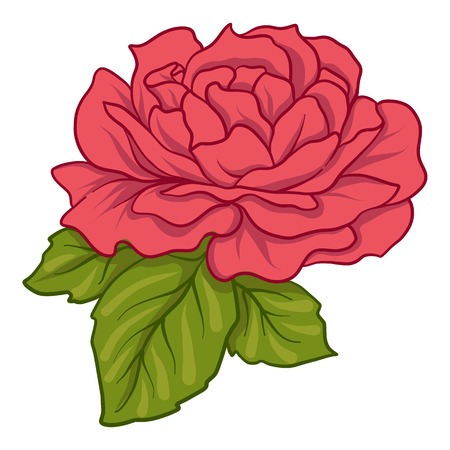 Isolated red rose with green leaves. Stock line vector illustrat