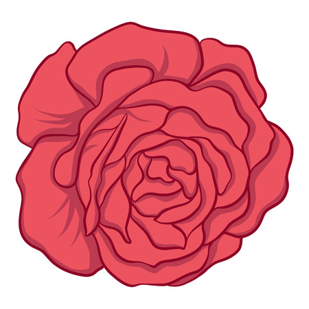 Isolated red rose. Stock vector illustration. Illustration