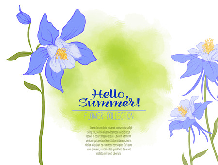 A Columbine flower on a green watercolor background. The flowers in the botanical style, minimalistic design. Place for the inscription. Hello summer Stock line vector illustration. Illustration