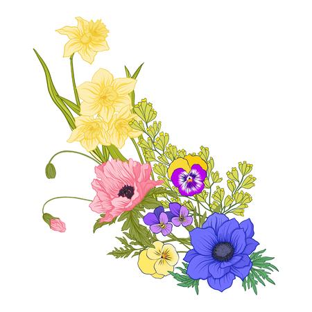 여름 꽃과 컴포지션 : 양 귀 비, 수 선화, 곰 끌, 식물성에 바이올렛. 인사말 카드 생일, 초대 또는 배너, 자 수에 대 한 좋은. 주식 라인 벡터 일러스트
