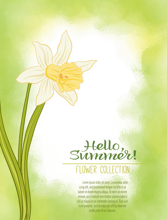 A narcissus flower on a green watercolor background. The flowers in the botanical style, design. Place for the inscription. Hello summer Stock line vector illustration.