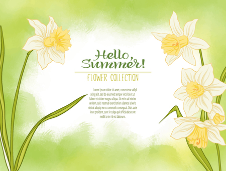 A narcissus flower on a green watercolor background. The flowers in the botanical style, minimalistic design. Place for the inscription. Hello summer Stock line vector illustration. Stock Vector - 86090802