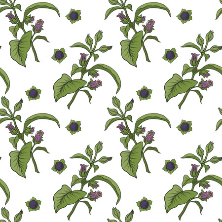 Seamless pattern and background with belladonna. Stock vector il 向量圖像