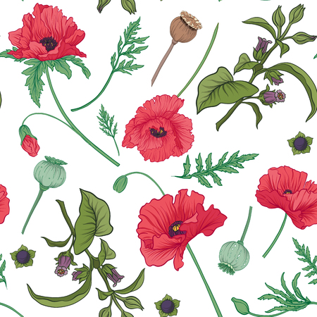 Seamless pattern, background with red opium poppy and belladonna