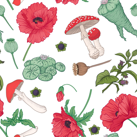 Seamless pattern and, background with red opium poppy and amanit