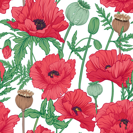 Seamless pattern, background with red opium poppy. Stock  vector
