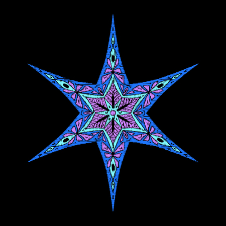 Star embroidery for fashion.