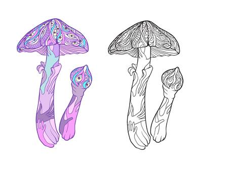 Miraculous plant. Amanita mushroom. Illusztráció