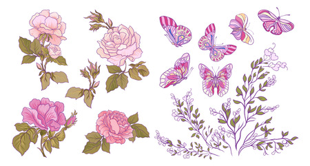 Rose, butterfly and branch set. Stock line vector illustration.