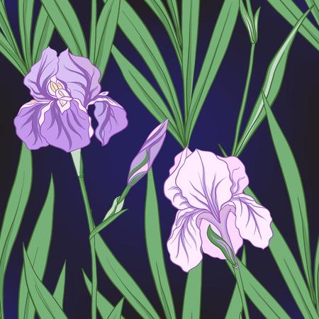 Modèle sans couture avec iris pourpre dans un style japonais. Vecteur stoc Banque d'images - 86422593
