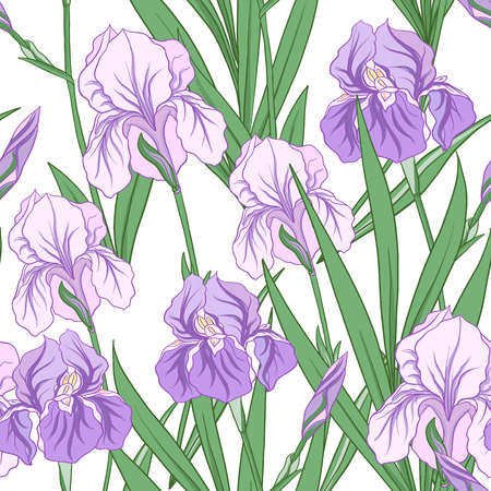Seamless pattern with purple iris in Japanese style. Vector stoc