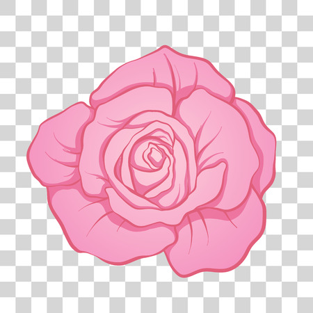 Isolated pink rose flower. Stock line vector illustration.