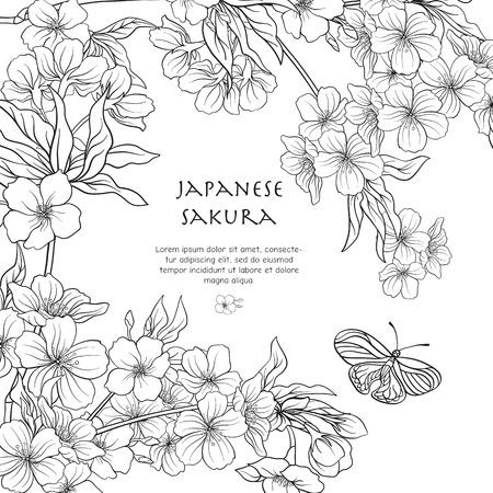 Illustrations with Japanese blossom sakura