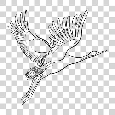 Japanse kraan geïsoleerde tekening. Stock vector illustratie. Stock Illustratie