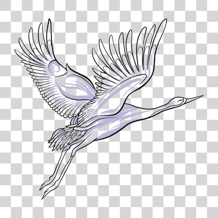 タンチョウ鶴の孤立した図面。株式ベクトル イラスト。