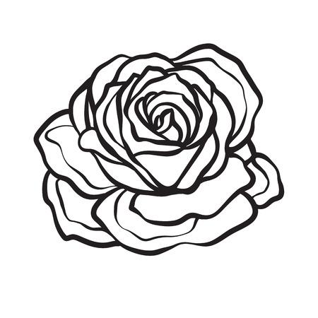 rose tattoo: Rose flower isolated outline hand drawn. Stock line vector illustration. Illustration