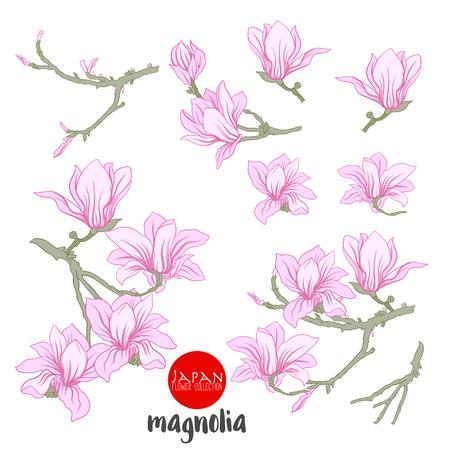 Flowers on branch. Stock line vector illustration botanic flowers.