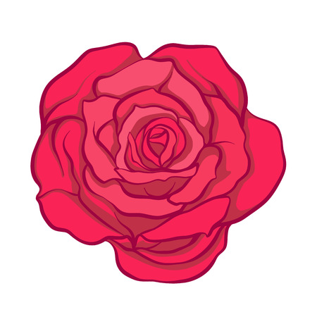 rose tattoo: Red rose flower isolated hand drawn. Stock line vector illustration.   Illustration