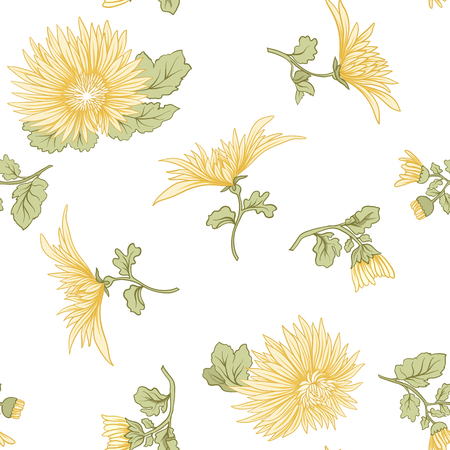 Chrysanthemum. Seamless pattern of yellow Japanese chrysanthemums. On a white background. Stock vector.