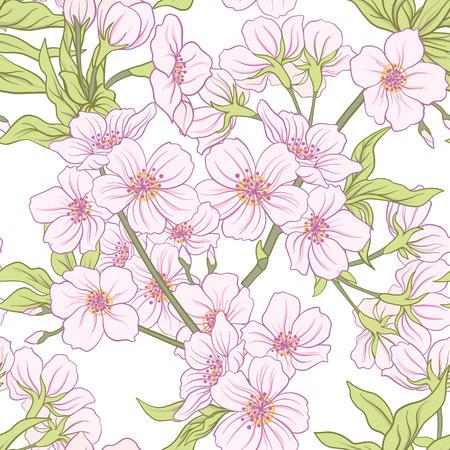さくらの花のパターンのイラスト。  イラスト・ベクター素材