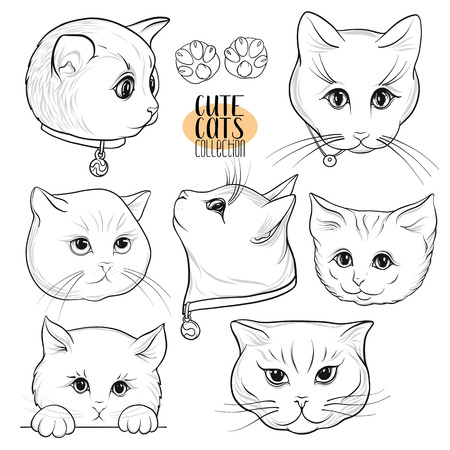 Set of cute cats with different emotions. Stock vector illustration. Outline hand drawing.