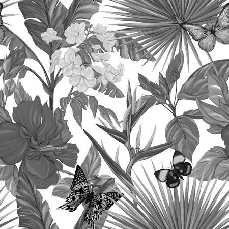 Vector seamless pattern, black and white background with butterflies 向量圖像