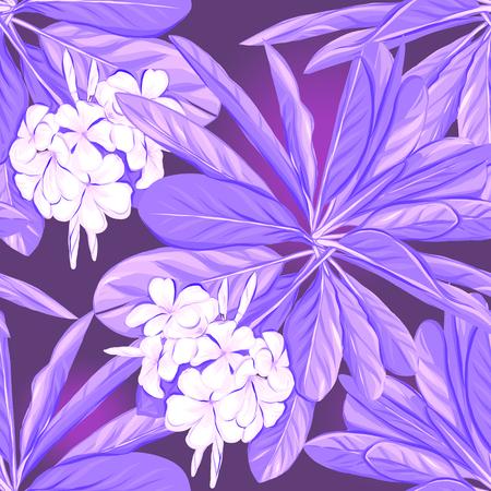 Seamless pattern, hand-drawn background with white plumeria Illustration