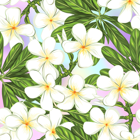 Seamless pattern, background with white plumeria on vanilla background. Hand drawn colorful vector illustration without transparent and gradients. 向量圖像