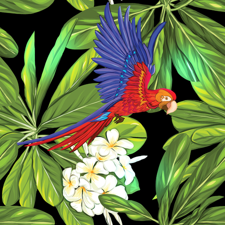 Seamless pattern, background with parrot and white plumeria on black background. Hand drawn colorful vector illustration without transparent and gradients. Illustration