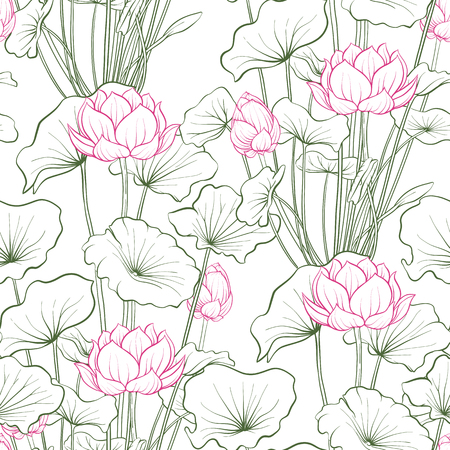 Modello senza cuciture, sfondo con fiore di loto. Stile di illustrazione botanica. Illustrazione vettoriale d'archivio.