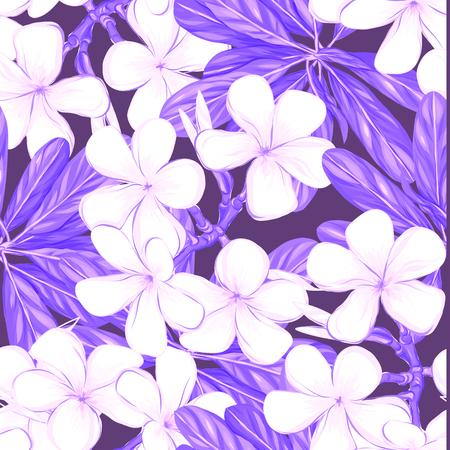Seamless pattern, hand-drawn background with white plumeria