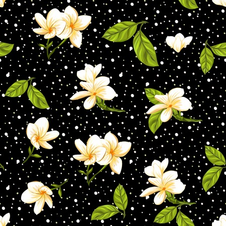Seamless pattern, background with white plumeria on b w stripes background. Hand drawn colorful vector illustration without transparent and gradients. Illustration
