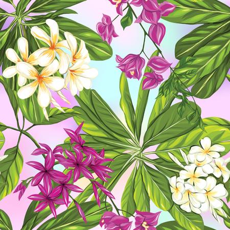 Seamless pattern, background with tropical plants: monstera,  strelitzia,  bougainvillea, Illustration