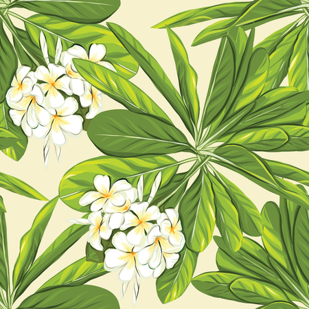 Seamless pattern, background with white plumeria on yellow background. Hand drawn colorful vector illustration without transparent and gradients.