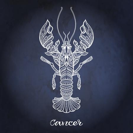 Zodiac sign. Astrological horoscope collection. Vector illustration