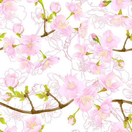 Naadloze patroon, achtergrond met bloeiende kersen Japanse sakura in zacht roze roze kleuren. Voorraad vectorillustratie. Geïsoleerd op witte achtergrond. Gekleurd en overzichtspatroon.