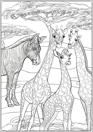 Background with giraffes and zebras. Outline hand drawing. Good for coloring page for the adult coloring book.. Vector Illustration. Foto de archivo - 110431112