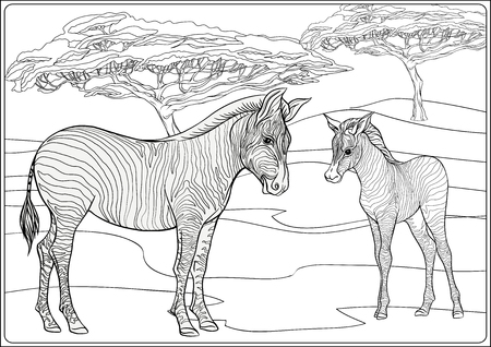 Background with zebras. Outline hand drawing. Good for coloring page for the adult coloring book.. Vector Illustration. 矢量图像