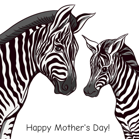 Background with zebra mother and her child. Good for greeting card for happy mothers Day, for birthday, invitation or banner for zoo or family party. Vector Illustration.