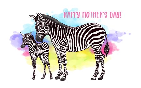 Background with zebra mother and her child on rainbow watercolor background. Good for greeting card for happy mothers Day, for birthday, banner for zoo or family party. Vector Illustration.