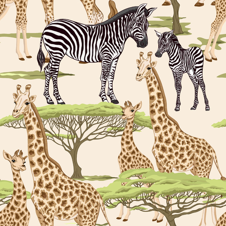 Seamless pattern, background  with adult zebra and giraffe  and zebra and giraffe cubs. Vector illustration. Foto de archivo - 107698890